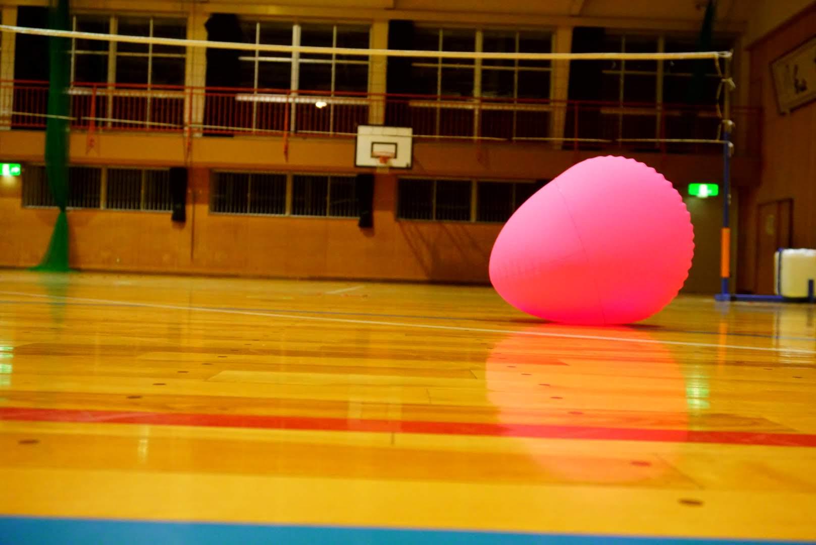 フラバール のボールの画像